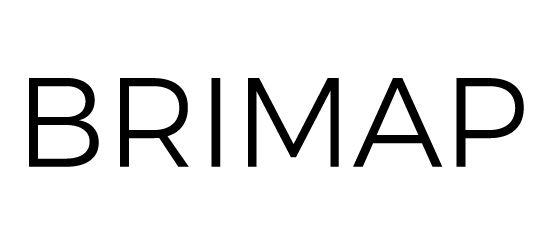 BRIMAP_logo