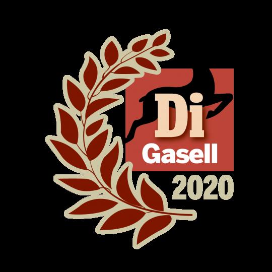 di_gasell_Gasellvinnare 2020_stående